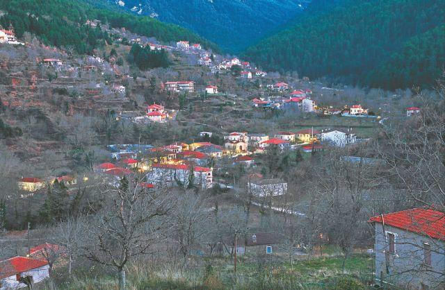 Χρήσιμες πληροφορίες | tanea.gr