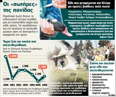 Σώζουν ένα «δάσος» πουλιά | tanea.gr