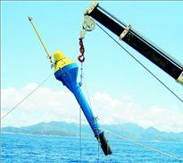 Βλέπουν ψάρια στα 1.000 μ. βάθος   tanea.gr
