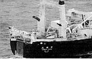 «Επικήρυξαν» με 20.000 ευρώ τους Ιάπωνες φαλαινοθήρες | tanea.gr