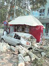 Ο αέρας πήρε και σήκωσε δέντρα και στύλους της ΔΕΗ   tanea.gr