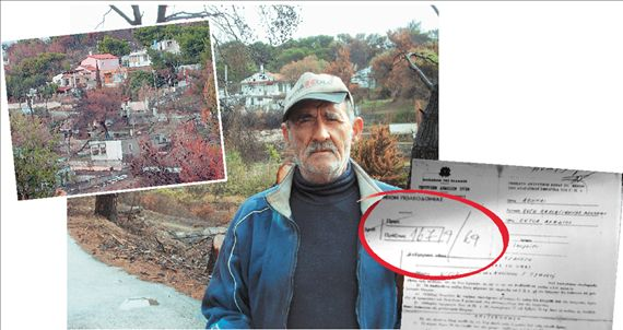 Αναδασώνουν τα... σπίτια! | tanea.gr