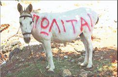 Φοίβη Αθηναίου | tanea.gr