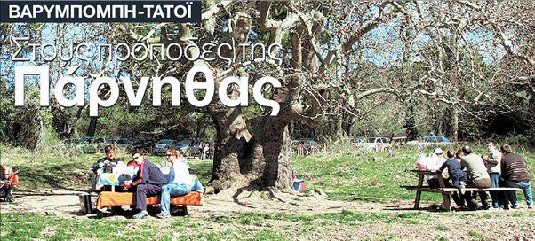 Στους πρόποδες της Πάρνηθας | tanea.gr
