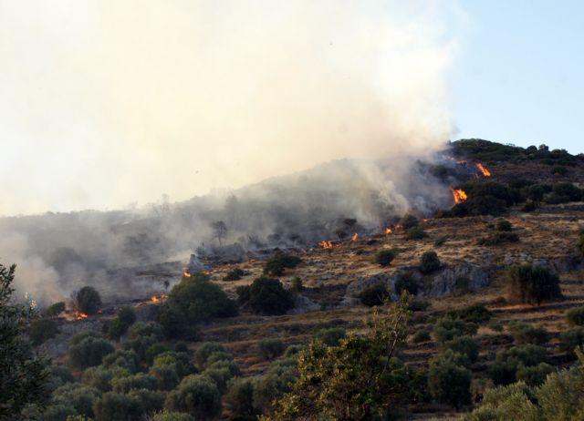 Πυρκαγιά στο Οίτυλο Λακωνίας | tanea.gr
