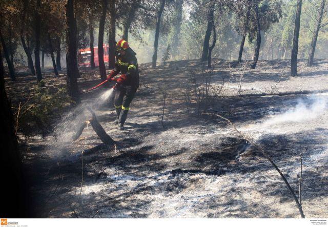 Πάνω από  60 πυρκαγιές  μέσα σε 48 ώρες   tanea.gr