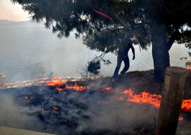 Σε εξέλιξη πυρκαγιά στην Έδεσσα   tanea.gr