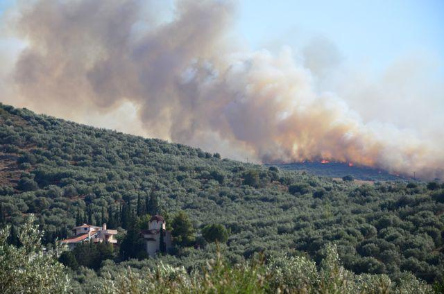 Υπό μερικό έλεγχο η πυρκαγιά στη Νεμέα Κορινθίας   tanea.gr