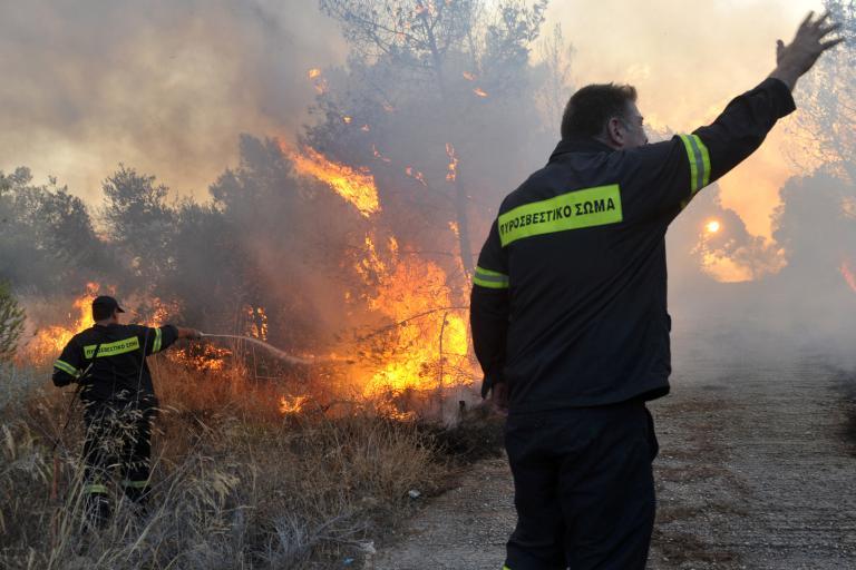 Δύο συλλήψεις για εμπρησμό από πρόθεση στη Σάμο | tanea.gr