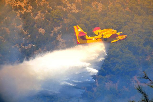 Σκληρή μάχη με τις φλόγες στη Ρόδο - Αναζωπυρώθηκε η φωτιά στη Φαιστό | tanea.gr