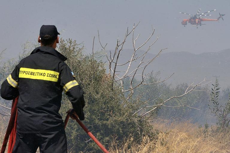 Σε ύφεση η φωτιά στις Κεχριές Κορινθίας | tanea.gr