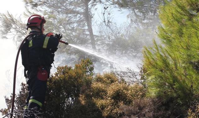 Η φωτιά στη Θάσο καίει χαράδρα αλλά παραμένει απειλητική | tanea.gr