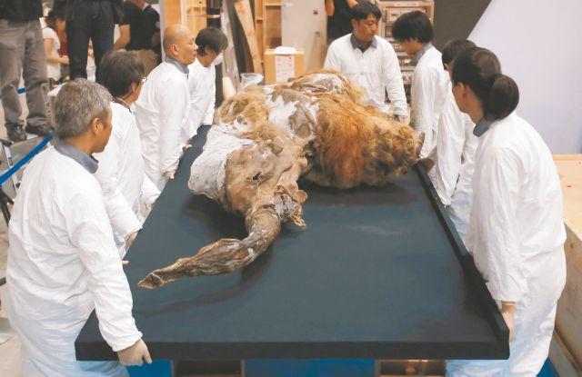 Η κλωνοποίηση ενός προϊστορικού ζώου παραμένει στη σφαίρα του... Τζουράσικ Παρκ | tanea.gr