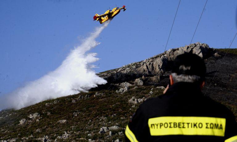 Υπό μερικό έλεγχο φωτιά στο Καπανδρίτι   tanea.gr