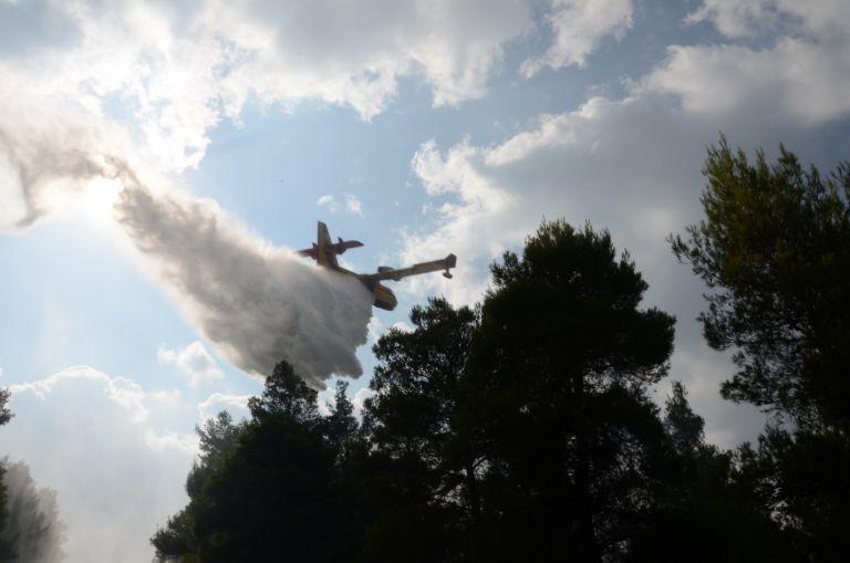 Φωτιά απείλησε σπίτια στη Μεγαλόπολη | tanea.gr