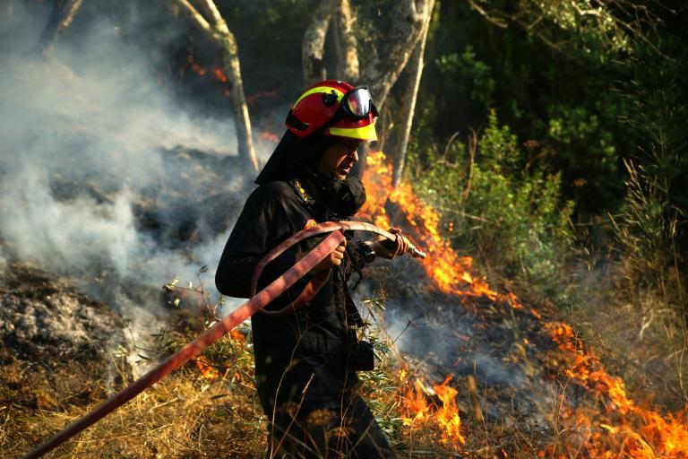 Κάηκαν 150 στρέμματα με πουρνάρια στην Ασπροβάλτα | tanea.gr