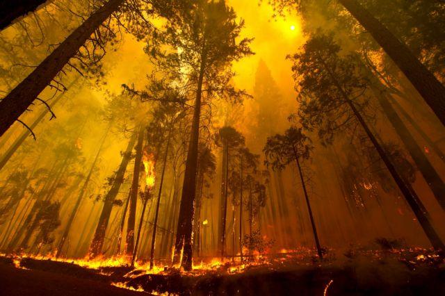 Συνεχίζει να καίγεται η Καλιφόρνια | tanea.gr