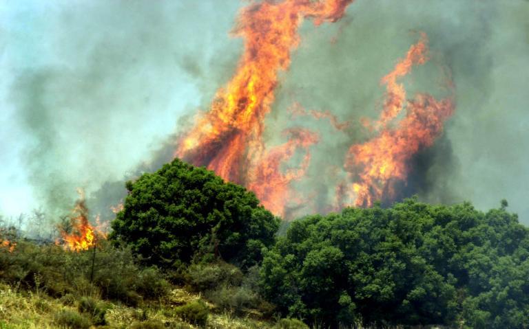 Πολλές οι επικίνδυνες περιοχές για πυρκαγιά τη Δευτέρα | tanea.gr