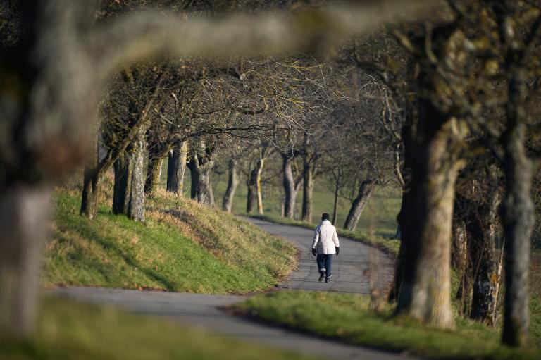 Το πράσινο στις πόλεις βελτιώνει την ψυχική υγεία των κατοίκων σύμφωνα με έρευνα | tanea.gr