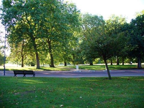 Πιο ωφέλιμη η ζωή δίπλα σε πάρκο απ' ό,τι το... τζόκερ!   tanea.gr