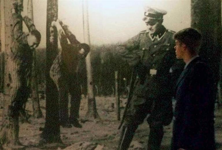 Οι Ναζί ήθελαν να επιτεθούν με μολυσμένα κουνούπια! | tanea.gr