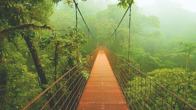 Κόστα Ρίκα: Η πράσινη «Ελβετία» της Αμερικής | tanea.gr