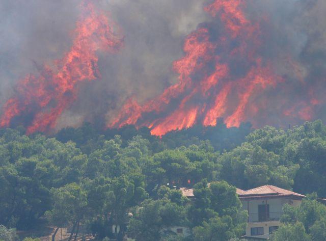 Κρήτη: Ανεξέλεγκτη φωτιά στην Ιεράπετρα | tanea.gr