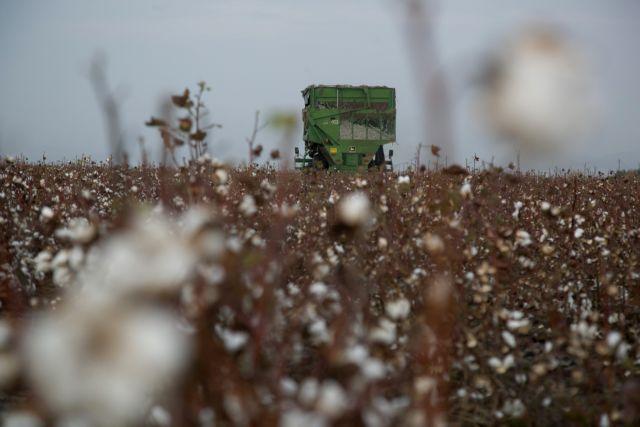 Αποζημιώσεις 30 εκατ. ευρώ σε αγρότες σήμερα από τον ΕΛΓΑ   tanea.gr