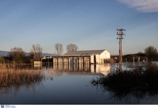 Σέρρες: Μήνυση κατά παντός υπευθύνου από πλημμυροπαθείς αγρότες   tanea.gr