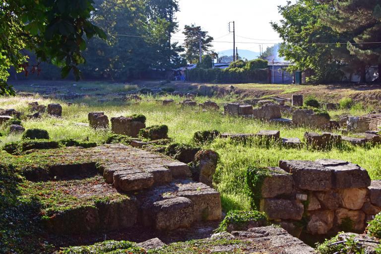 Το αρχαιολογικό μουσείο Τεγέας γιορτάζει την ευρωπαϊκή του διάκριση | tanea.gr