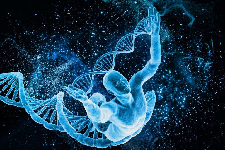 «Μίλησε» τo DNA των Πελοποννήσιων   tanea.gr