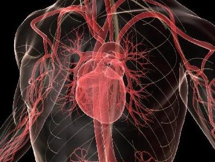 Τι είναι οι μυοκαρδιοπάθειες; | tanea.gr