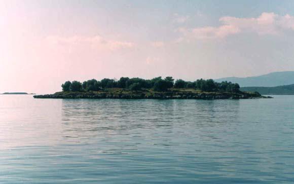 Ανθρώπινο κρανίο και οστά σε νησάκι στη Φωκίδα | tanea.gr