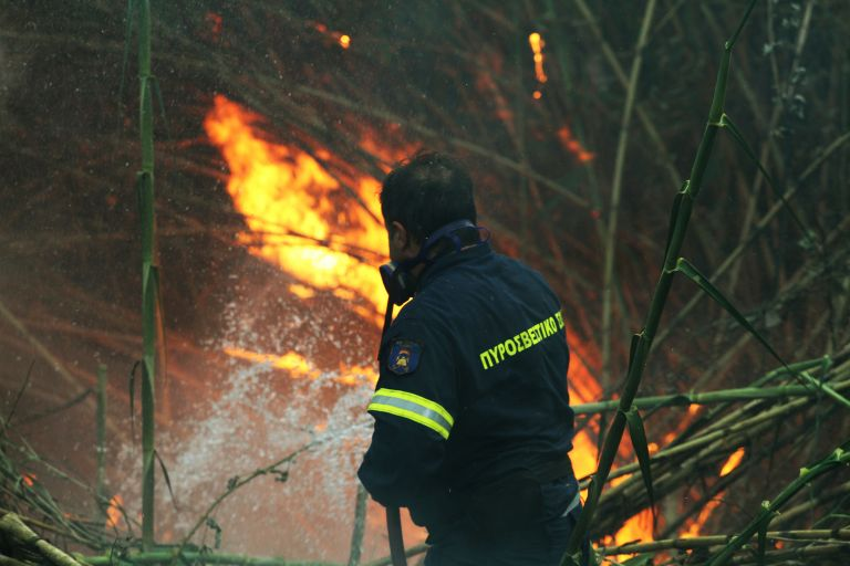 Σε ύφεση η πυρκαγιά στην Ανατολή Ιεράπετρας | tanea.gr