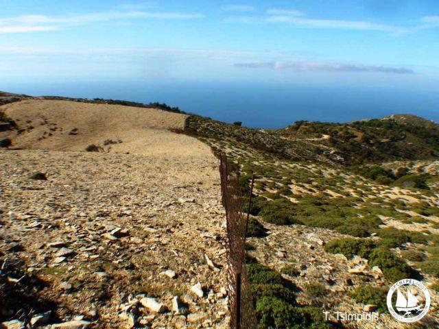 Είδος προς εξαφάνιση το χώμα στα νησιά | tanea.gr