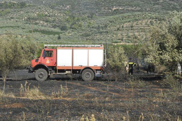 Φωτιά στο Πολυδένδρι Αττικής | tanea.gr