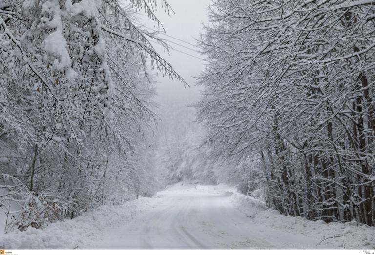 Καταιγίδες, χιόνια και πτώση της θερμοκρασίας   tanea.gr