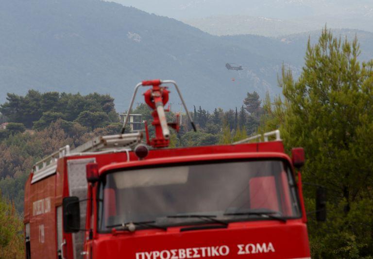 Πυρκαγιές στον Αυλώνα Αττικής και στην Κίσσαμο Χανίων   tanea.gr