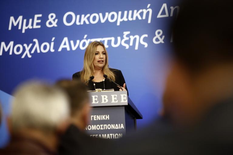Σχέδιο για τις μικρομεσαίες επιχειρήσεις παρουσίασε η Γεννηματά   tanea.gr