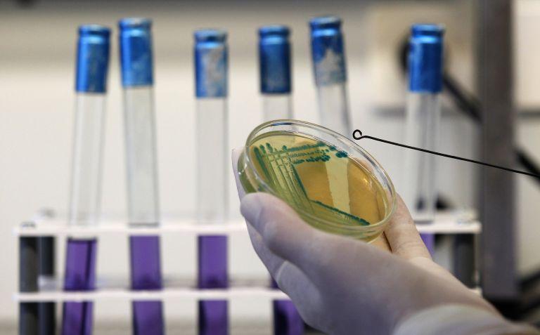 Ανακαλύφθηκε το πρώτο βακτήριο που προστατεύει από καρκίνο | tanea.gr