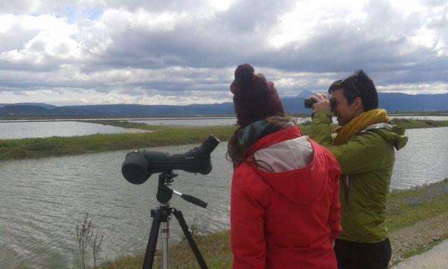 Λέσβος: Ξεκινούν σεμινάρια παρατήρησης πουλιών | tanea.gr