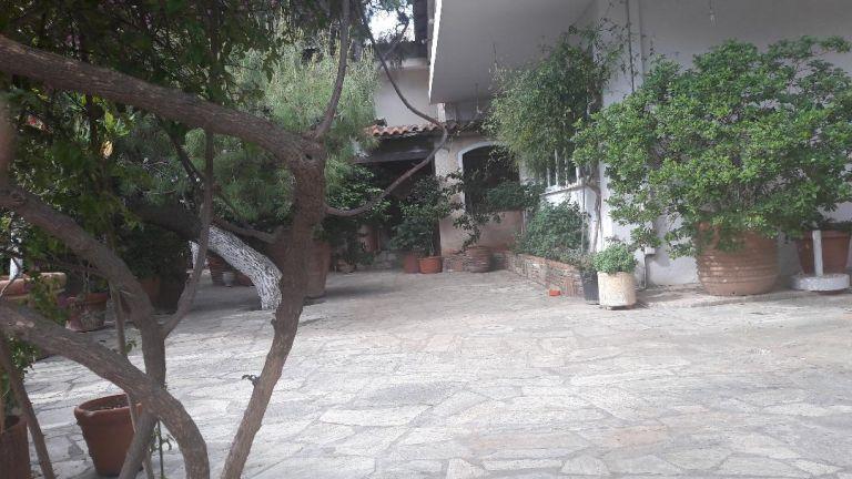 Εν ψυχρώ δολοφονία συνταξιούχου αστυνομικού στην Παλλήνη | tanea.gr