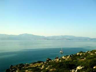Περιοχή ΙΜΜΑ (σημαντική) για τα θαλάσσια θηλαστικά είναι ο Κορινθιακός Κόλπος | tanea.gr