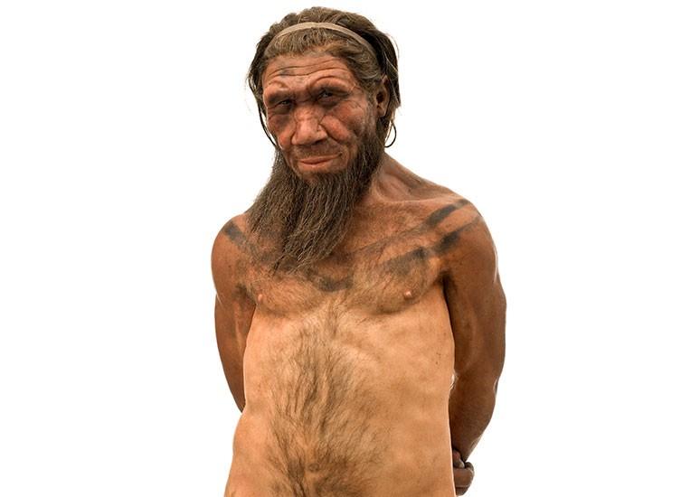 Ο πρόγονος του Οδυσσέα ταξίδευε στην Aν. Μεσόγειο πριν 130.000 χρόνια | tanea.gr