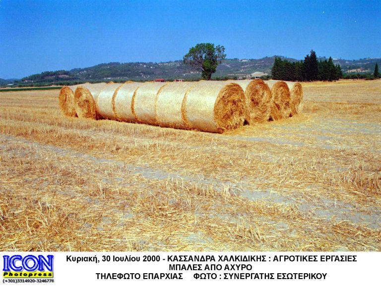 Ηλεκτρική ενέργεια από άχυρο στο θεσσαλικό κάμπο | tanea.gr