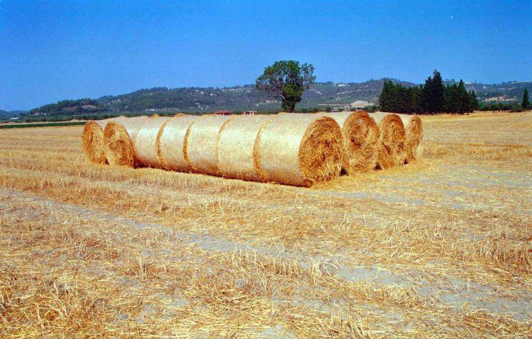 Θα παράγουν ηλεκτρική ενέργεια από… άχυρα στο νομό Λάρισας | tanea.gr