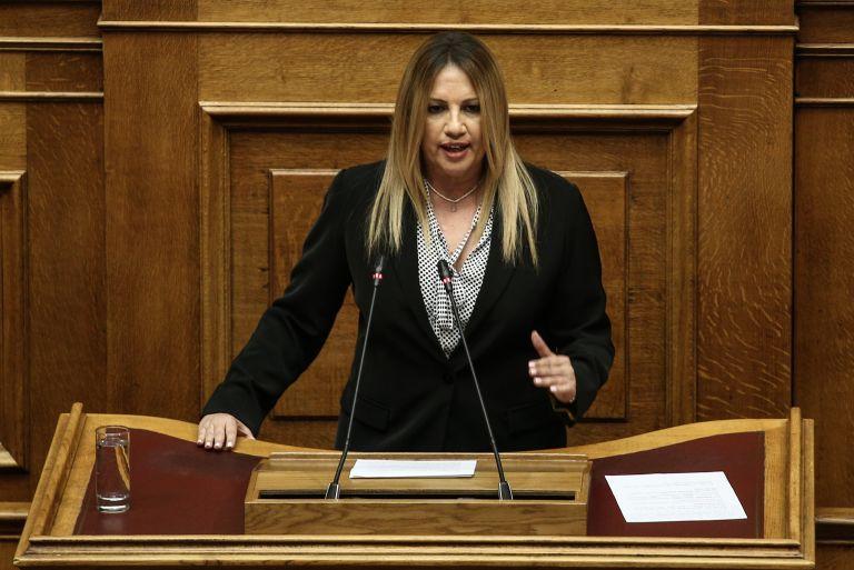 Πρόωρες εκλογές ζητά ξανά η Φώφη Γεννηματά | tanea.gr