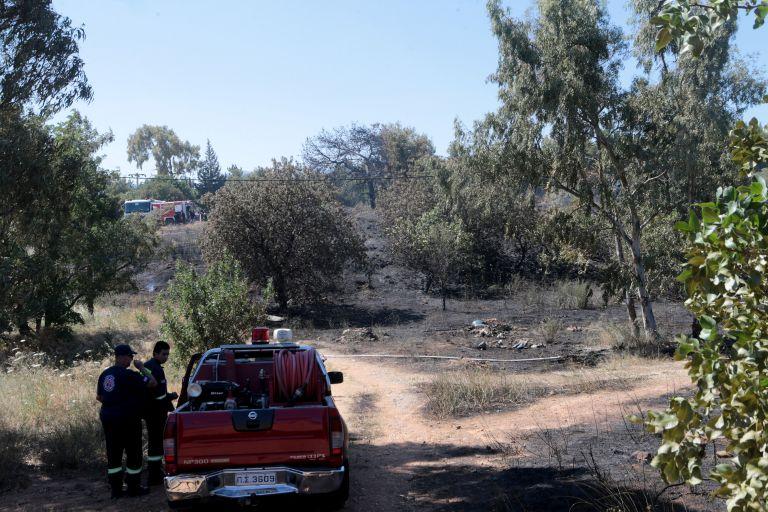 Υπό μερικό έλεγχο η φωτιά στο Αγρίνιο | tanea.gr