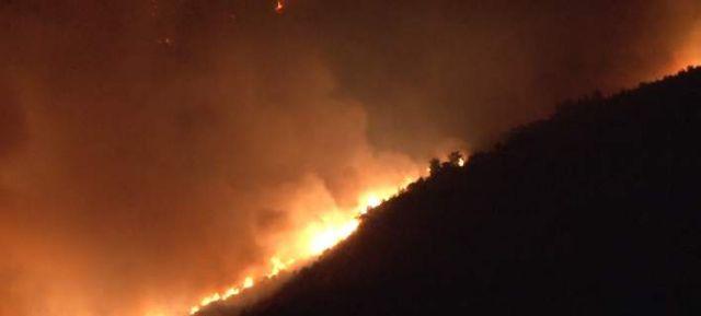 Οριοθετήθηκε η φωτιά που ξέσπασε στην Τζιά (βίντεο) | tanea.gr
