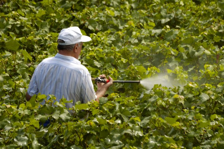 Ορεστιάδα: 68χρονος έχασε τη ζωή του κατά τη διάρκεια αγροτικών εργασιών | tanea.gr